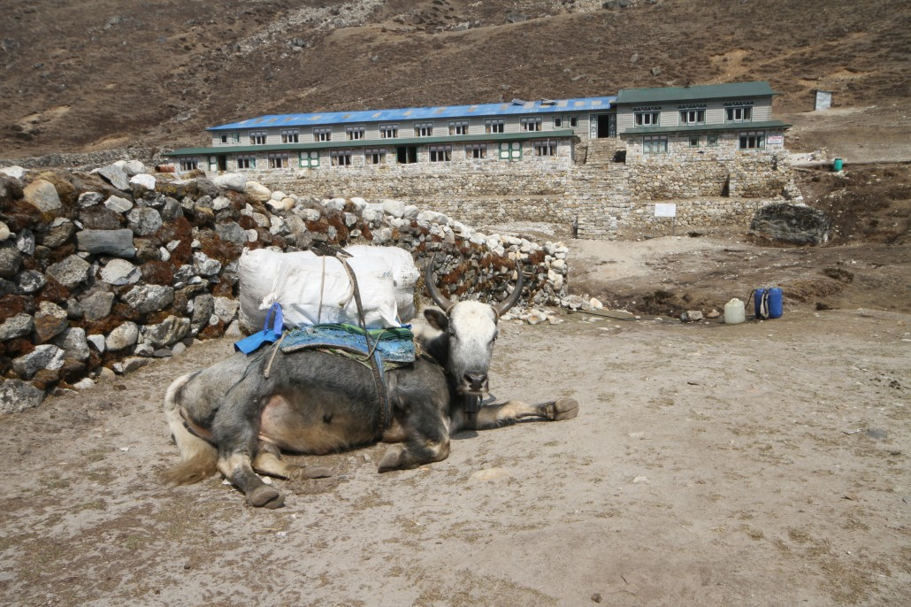 Top-10 porter loads on the Everest Base Camp Trek