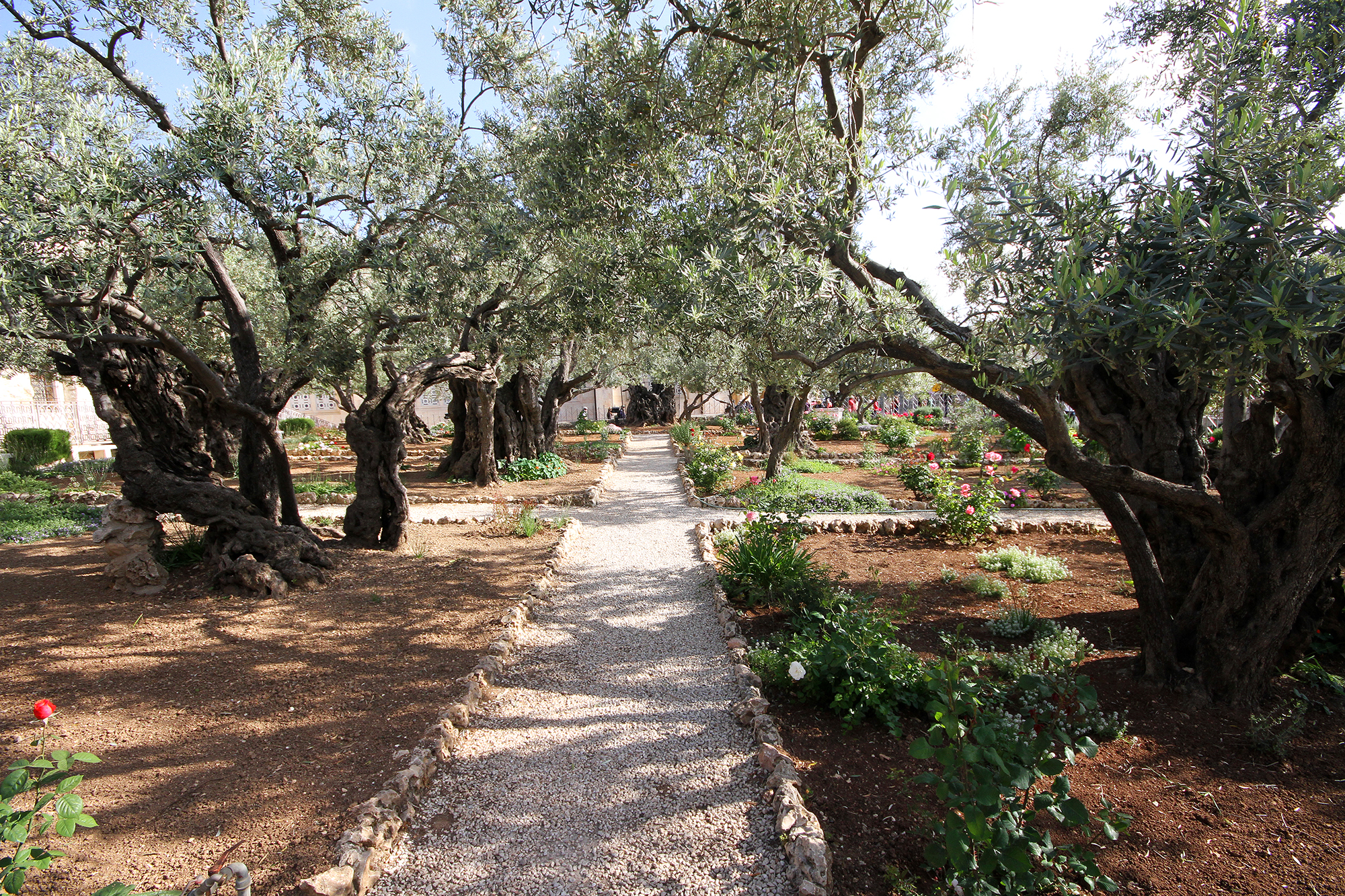 Church of Gethsemane