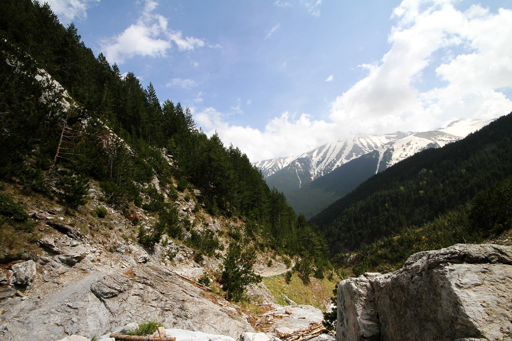 Mt. Olympus hike