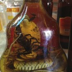 Scorpion in liquor